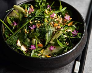 Knackiger Kräutersalat mit Fenchel und Gurke