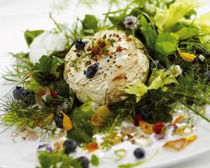 Kräutersalat mit gegrilltem Camembert