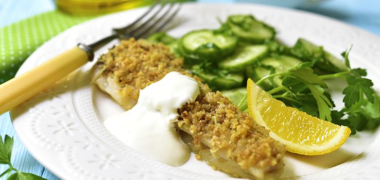 Seelachs mit Kräuterbrösel auf frischem Gurkensalat